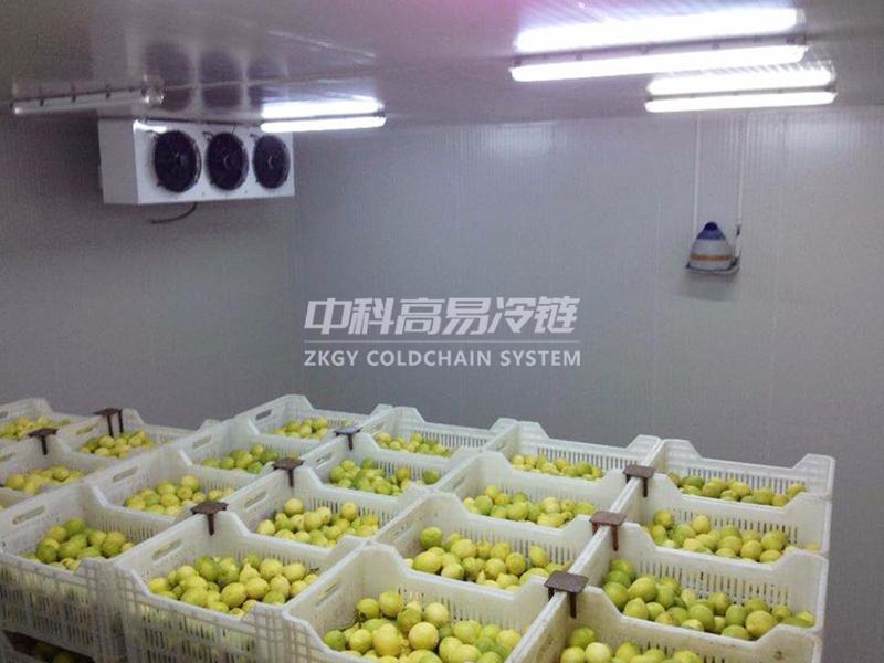 北京本来生活-水果保鲜冷库-常州冷库设计|冷藏冷库工程|常州保鲜冷库建设|冷库建造_中科高易冷链系统(江苏)有限公司